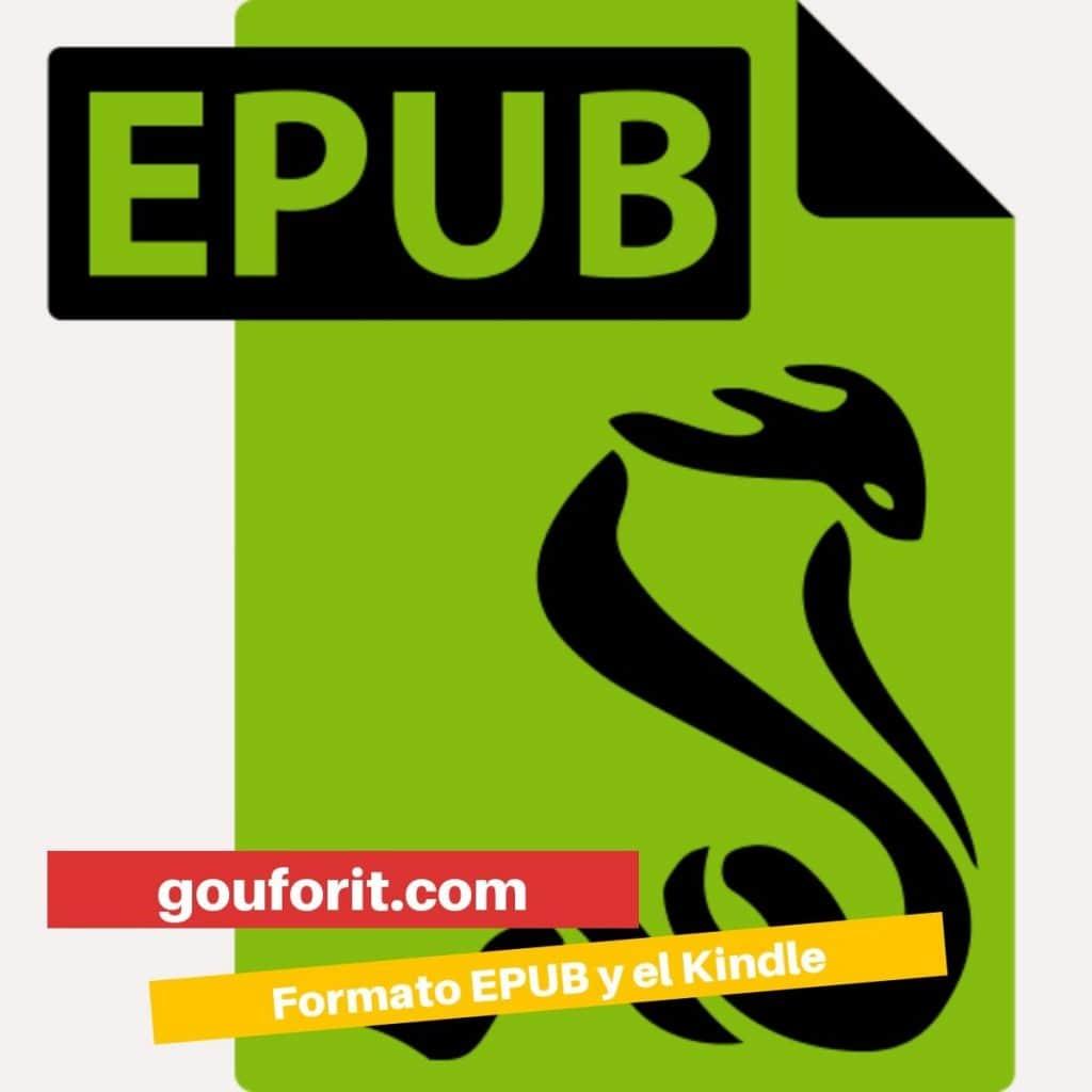 ¿Qué es el formato ePub?